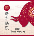 happy chinese new year 2021 greeting card with ox vector image