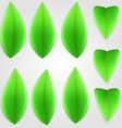 Natural leaf 01 vector image vector image