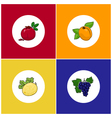 Round White Fruit Icons on Colorful Background vector image vector image