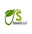 smart leaf initial letter d logo concept design vector image