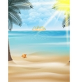 Starfish and palm trees on the beach vector image