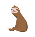 cute basloth seating funny sloth vector image vector image