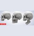 detailed graphic photorealistic human skulls set vector image vector image