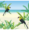Exotic tropical card with toucan parrot birds vector image vector image