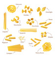 set of isolated pasta or food for cooking vector image