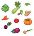 set vegetables diet vegetarianism stylization vector image vector image
