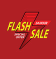 24 hour flash sale bright banner vector image