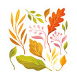 atumnal leaves vector image