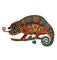 Color image of a chameleon vector image