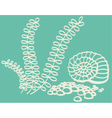 Drawing of shell in sea with seaweed vector image vector image