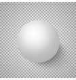 Photorealistic 3D Ball Template Bright vector image vector image
