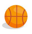 basketball soccer ball vector image vector image