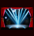 centre stage background vector image vector image