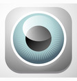 colorful eye - eyeball icons - vision aesthetics vector image vector image