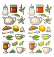 cup wit tea and branch with leaves vintage vector image vector image