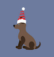 dog in christmas costume vector image vector image