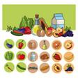 healthy food lifestyle image vector image vector image