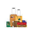 luggage set of flat colorful vector image vector image