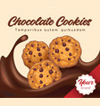 realistic chocolate cookies banner vector image