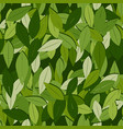 seamless pattern tea leaves on a green vector image vector image