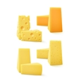 Set of Pieces Cheddar Swiss Cheese vector image