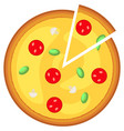 colorful pizza slice fast food icon poster vector image