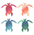 4 gradient hand drawn turtles vector image vector image