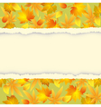 Autumn background with leaf pattern vector image
