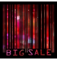 big sale bar code vector image vector image