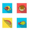 shrimp fish hedgehog and other speciessea vector image vector image