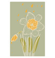 abstract line art daffodil flower with color vector image