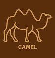 camel icon in linear style vector image