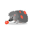 hedgehog with red apple cute animal cartoon vector image vector image
