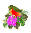 tropical bird with tropical flowers vector image vector image