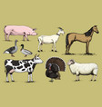 farm animals pig goat horse sheep cattle cow vector image vector image