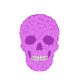 stylized violet verbena skull on white background vector image vector image