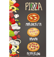 Whole Pepperoni Hawaiian Margherita pizza vector image