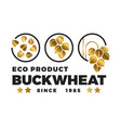 black buckwheat logo design eco buckwheat label vector image vector image