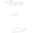 Black White US Virgin Islands Outline Map vector image