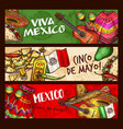 cinco de mayo mexican holiday celebration vector image