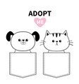 cute cat dog sitting in pocket adopt me pink vector image vector image