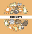 cute cats poster of kittens pets playing or vector image vector image