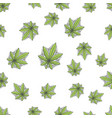seamless texture marijuana six vector image vector image