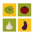 set fresh vegetable vegetarian cuisine vector image