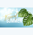 tropical summer lettering on background from vector image vector image