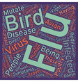 Bird Flu and You How Will The Flu Affect You text vector image vector image