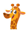 cartoon giraffe giraffe vector image