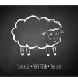 chalkboard drawing sheep vector image