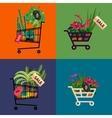 Florist shopShopping cart with plantsFlower vector image vector image