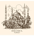 Istanbul blue mosque vector image vector image